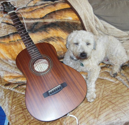 guitar and dog